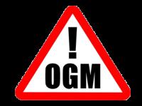 Finalmente una buona notizia: Coltivare OGM in Italia sarà praticamente impossibile!