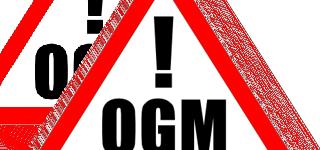 """Dossier Agricoltura: per Putin rischio """"guerra"""" se non si bandiscono gli OGM"""