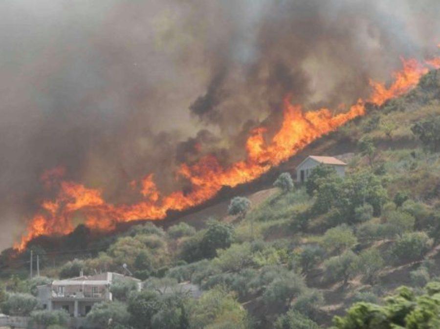 Il primo disastro ambientale della stagione in Sardegna