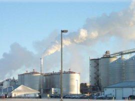 Dossier: gli impianti per la produzione di Energia dalla Biomassa