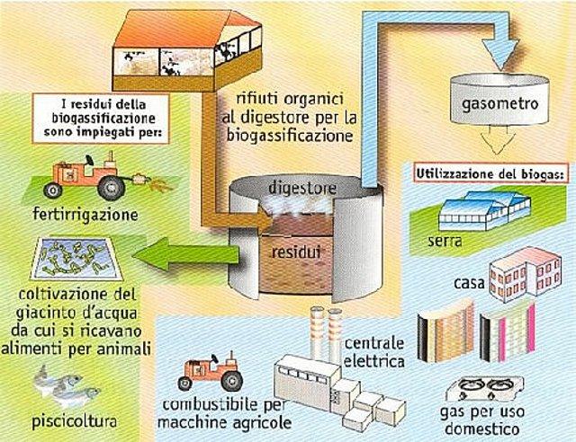 Cos'è un impianto di compostaggio