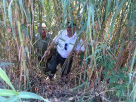 """Le nostre guardie Ambientali (sezione Cattolica) alla ricerca di """"zio Guido"""""""