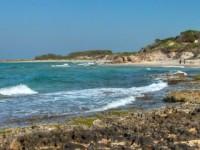 """Grande mobilitazione di ambientalisti e cittadini per salvare """"la riserva naturale e area marina protetta di Torre Guaceto"""""""