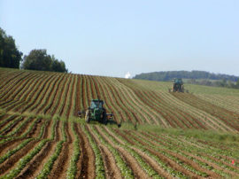 AGRICOLTURA E SALUTE: IL CASO PESTICIDI