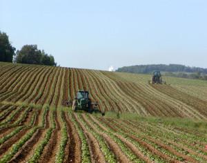 Il riscaldamento globale dipende anche dall'agricoltura
