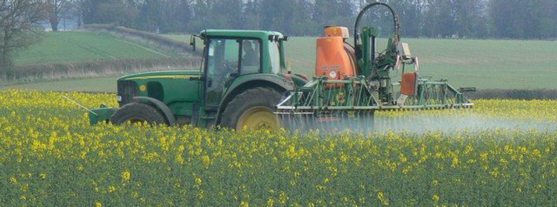 Tolleranza zero pesticidi: prima sentenza storica in Italia