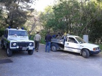 Andora: Accademia Kronos tutela i suoi boschi