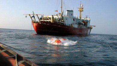 Trivellazione in Adriatico per qualche goccia di petrolio in più… ci risiamo!