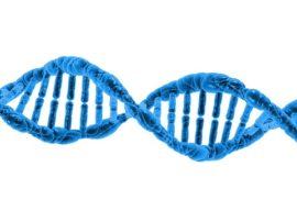 Un nuovo approccio farmacologico verso le malattie rare