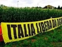 Comunicato EQUIVITA sul NO agli OGM in Italia