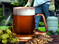 Germania, trovato diserbante (glifosato) in molte marche di birra