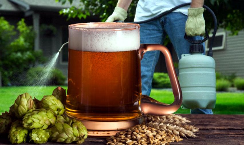 birra e glifosato