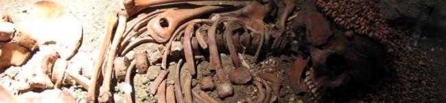 La datazione delle ossa