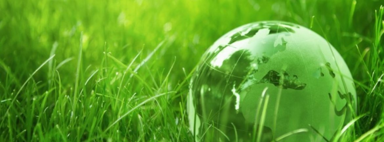 Le emissioni in agricoltura mettono a rischio l'accordo COP21 di Parigi
