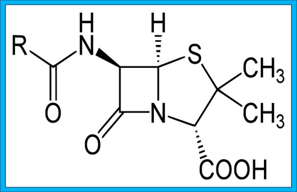 Formula di struttura della penicillina