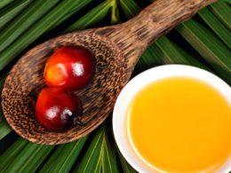 L'olio di palma può essere tossico secondo l'EFSA