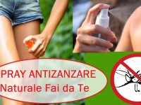 Come preparare in casa un repellente spray anti zanzare