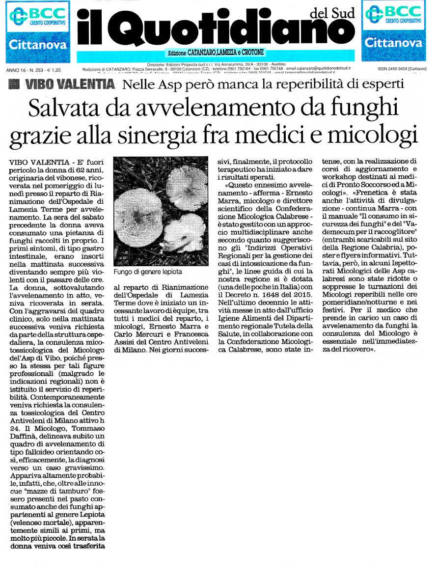articolo-il-quotidiano