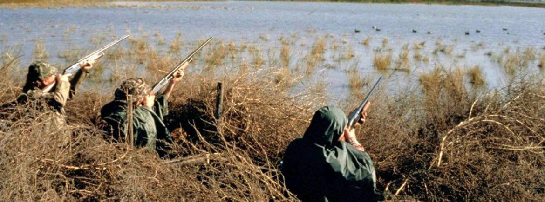 La recente legge veneta, che prevedeva 3600 euro di multa per chi disturbava i cacciatori, è incostituzionale
