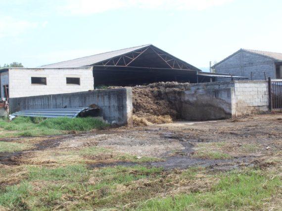 Bloccata attività illecita di un'azienda zootecnica a Serre