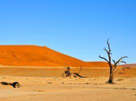 Perchè in Africa il problema dei cambiamenti climatici è più drammatico?
