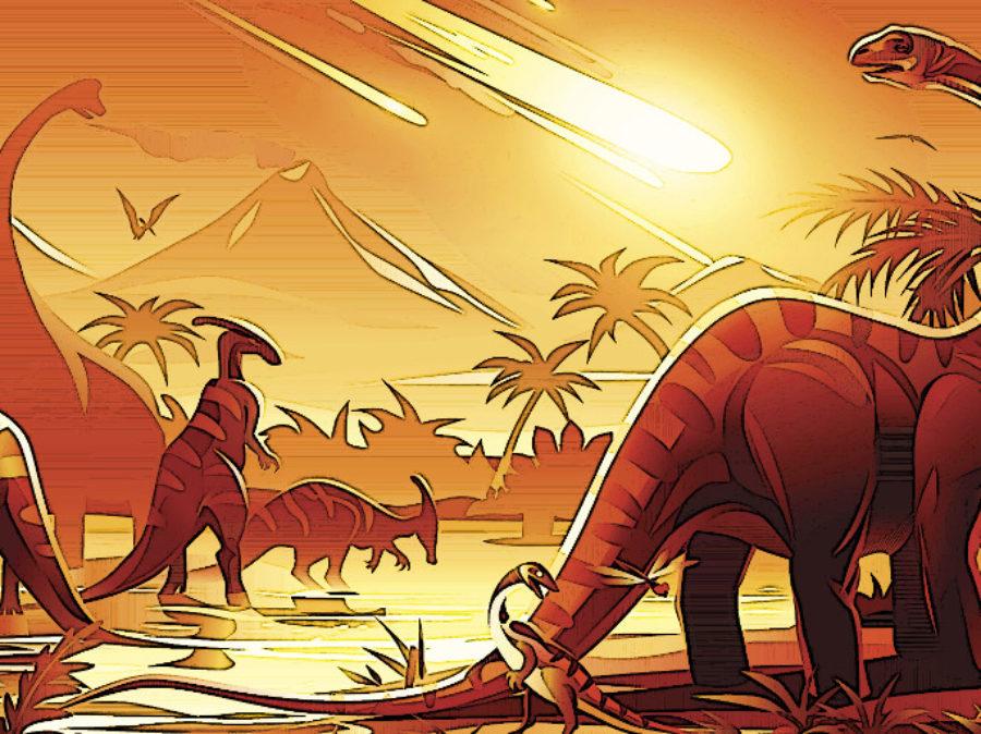 S.O.S. = rischio estinzione di massa per gli animali e non solo…