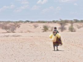 La fame colpisce 821 milioni di persone, colpa di clima e guerre