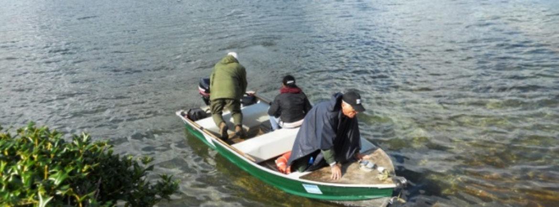 Conclusi i rilevamenti chimico-fisici dei laghi di Castel Gandolfo e Vico con l'ausilio dei satelliti dell'ESA