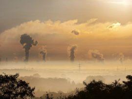 I poteri forti vincono… l'ambiente perde, perché?