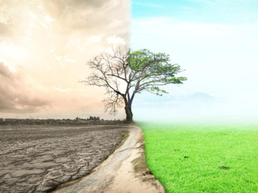 Cambiamento climatico o cambiamento sociale?