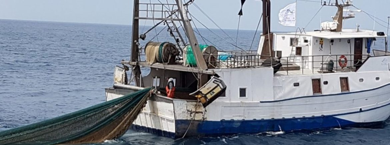 Accademia Kronos a fianco della fondazione Cetacea di Riccione per aiutare i pescatori a pulire il mare
