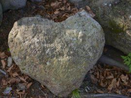 """Una """"roccia"""" ci salverà dall'infarto"""