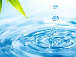 L'acqua alla base della vita