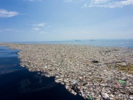 Un'isola di plastica anche nel nostro mare
