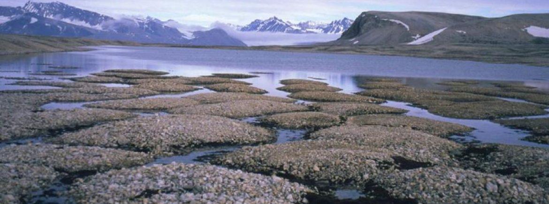 """La rapida fusione dell'Artico ci """"regala"""" un nuovo grave problema"""