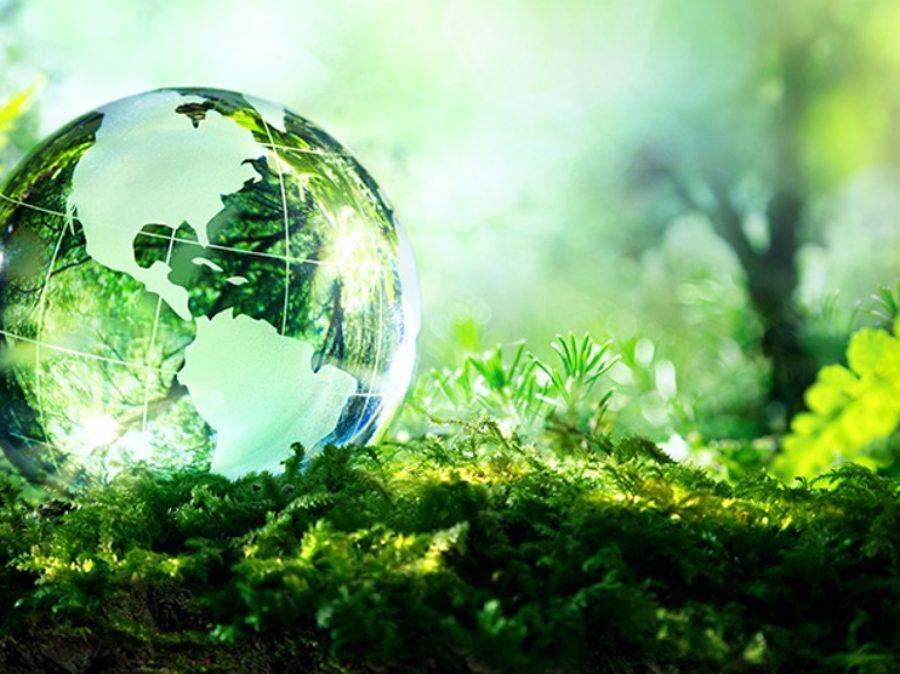 SOS biodiversità planetaria