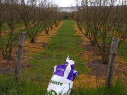 Stop ai fitofarmaci chimici in agricoltura