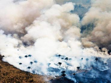 L'Amazzonia brucia e il predidente del Brasile non interviene per fermare uno dei più grossi crimini ambientali nella storia dell'umanità