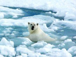 Clima, il riscaldamento del Pianeta mai così veloce in 2 mila anni!