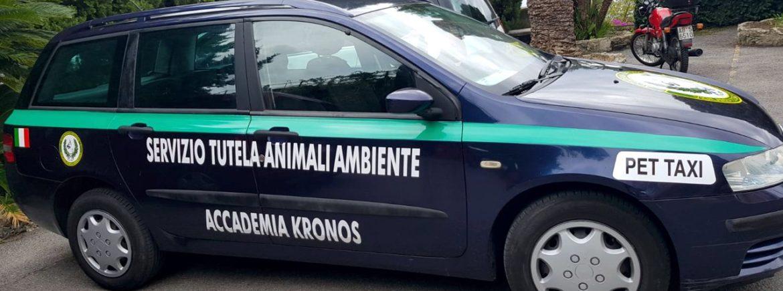 """""""Pet Taxi"""" di Accademia Kronos"""