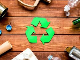 """La gestione dei rifiuti e la """"famosa"""" economia circolare"""