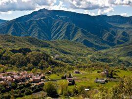 Un piccolo paese del Piacentino con soli 122 abitanti ha un milione di alberi