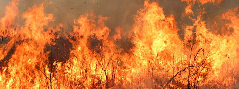La Sardegna in preda alle fiamme