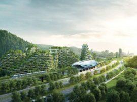 Migliorare l'aria urbana creando le città foresta