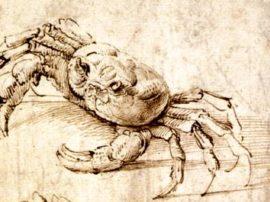 Leonardo Da Vinci e l'ecologia