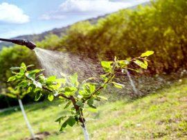 Chiare restrizioni per l'agricoltura chimizzata se passano le osservazioni sul PAN delle principali associazioni nazionali ambientali
