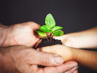 Il volontariato e la rivalutazione ambientale